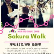 Sakura Walk is Back!